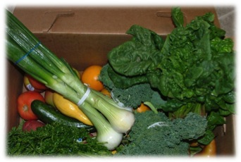 Brown Box Veggies