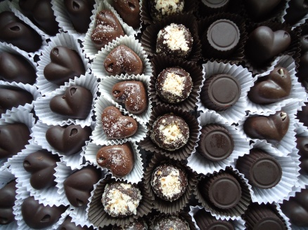 Image courtesy of Evolution Through Chocolate, by Joseph Vernon.