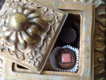 Lovely Chocolates.  Image courtesy of Evolution Through Chocolate, by Joseph Vernon.