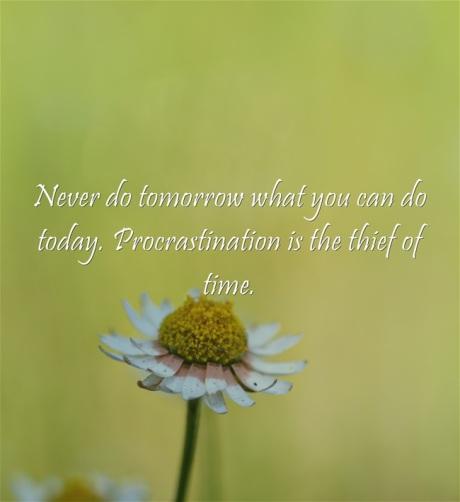 Never-do-tomorrow-what