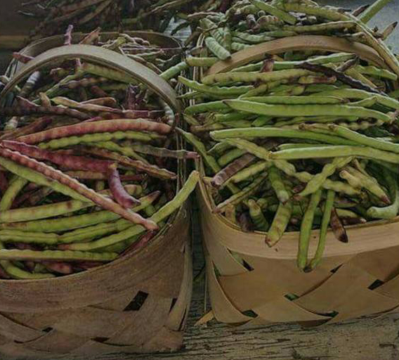 fresh-peas