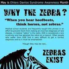 why the zebra